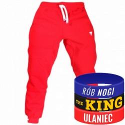 Trec Wear - Spodnie dresowe Pants 028 RED