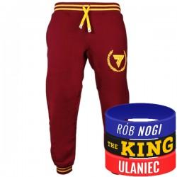 Trec Wear - Spodnie dresowe Pants 030 MAROON