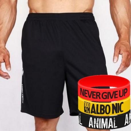 Trec Wear - Spodenki Short Pants 003 COOLTREC BLACK
