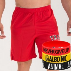 Trec Wear - Spodenki Short Pants 005 COOLTREC RED 13