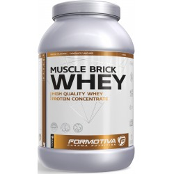 Formotiva - Whey Muscle Brick 1000g