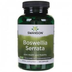 Swanson - Boswellia Serrata Extract 120kap
